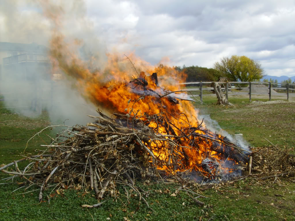 Brushpile burn